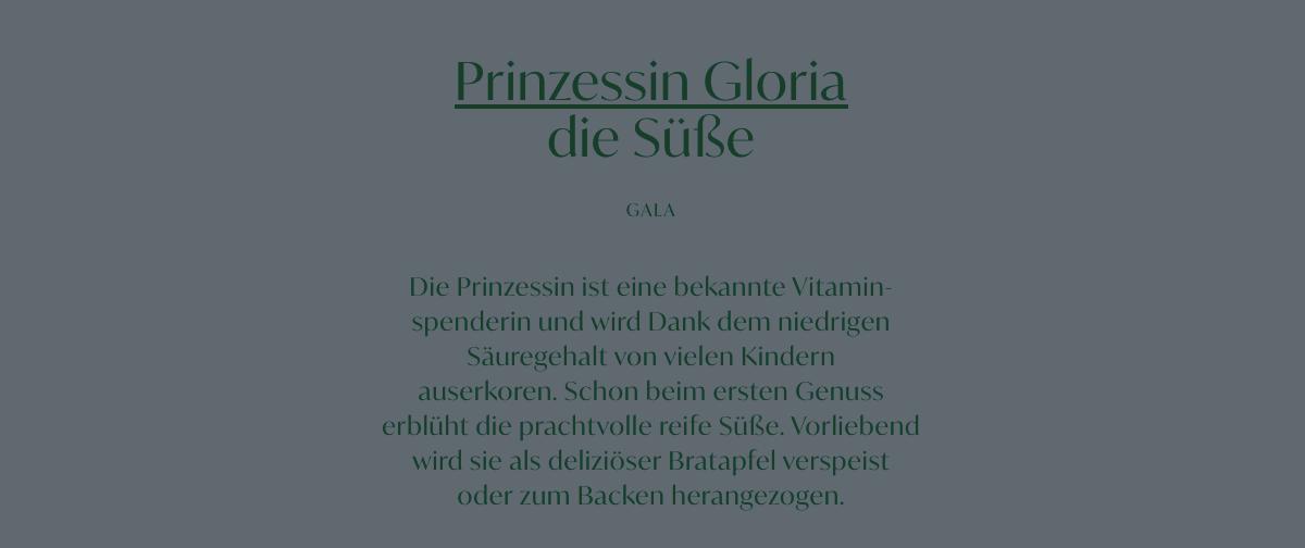 Protfolio Portfolio Prolactal Katharina Rucker Wording und Branding
